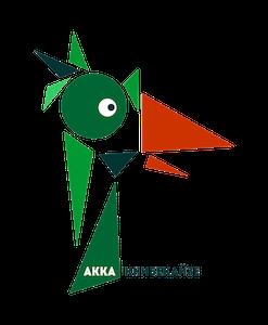 akkahostel.ru